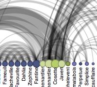 Protovis examples arc diagrams ccuart Choice Image